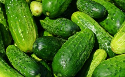 German Sercom user develops cucumber beer