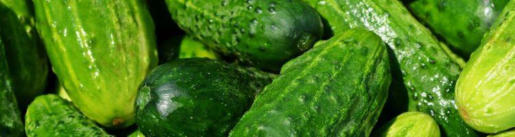 German Sercom user develops cucumber beer