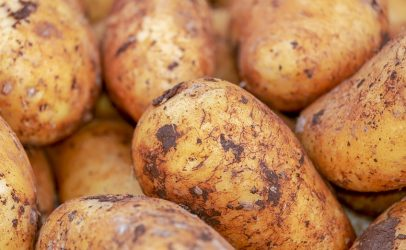 Wirelessly controlled potato storage cells
