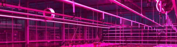 [Английский] SERCOM enters British horticulture sector