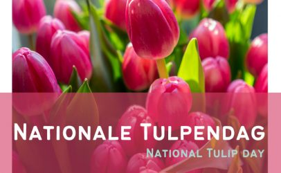 [Englisch] National Tulip Day 2021